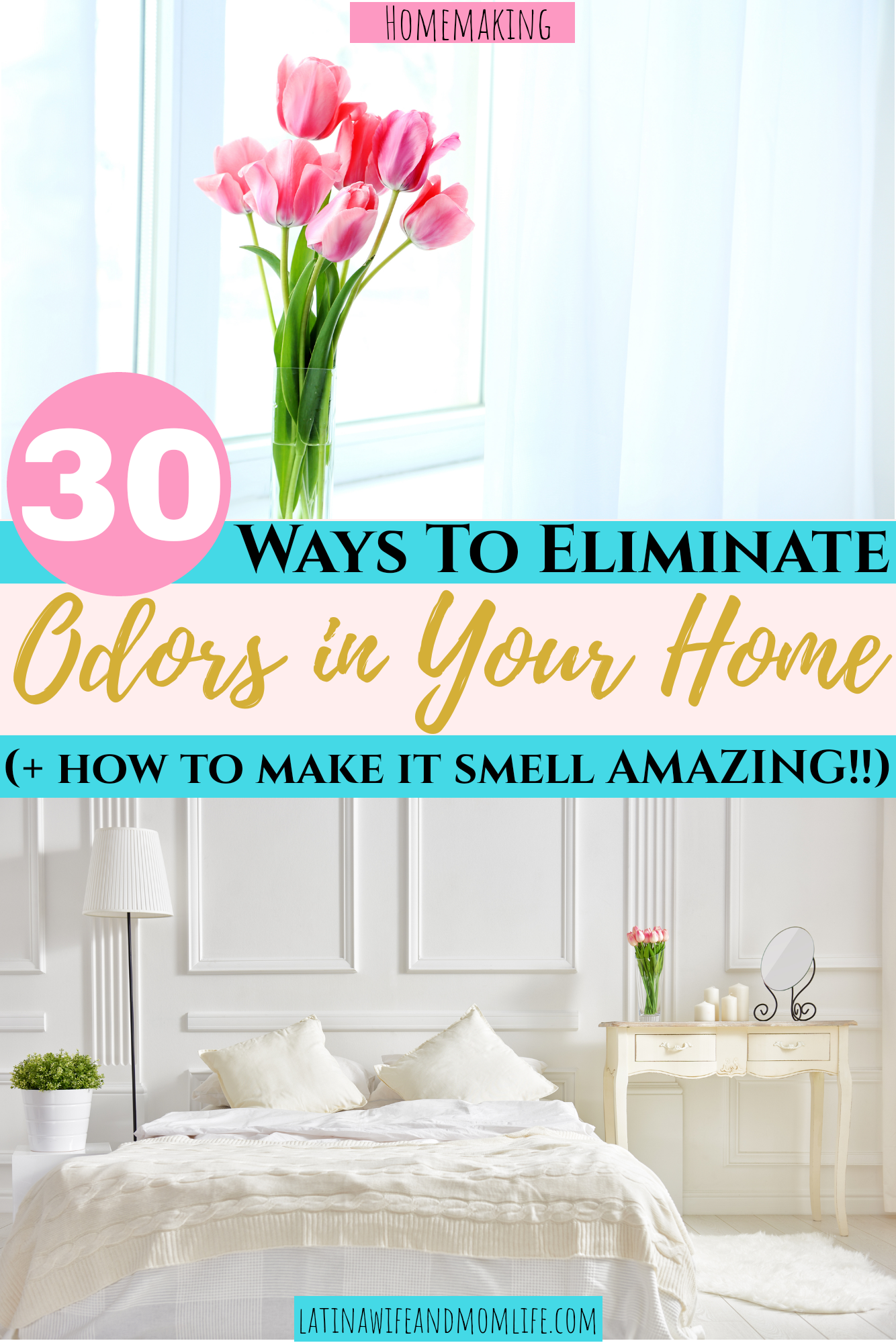 How to eliminate odors in your home